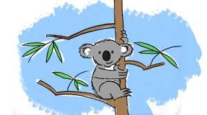 draw cute cartoon koala