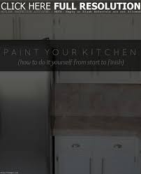 Antique Painted Kitchen Cabinets Kitchen Cabinets Home Depot Tehranway Decoration Modern Cabinets