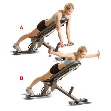 Neutral Grip Incline Dumbbell Bench Press Best 25 Incline Bench Ideas On Pinterest Bench Press Weights