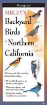 California Backyard Birds by Sibley U0027s Backyard Birds Of Northern California By Written