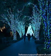 atlanta botanical garden lights atlanta botanical gardens christmas garden lights holiday nights