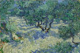vincent gogh painted a grasshopper into his olive trees 130