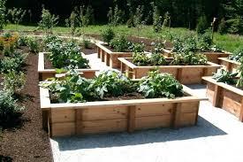 4x8 Raised Bed Vegetable Garden Layout Raised Beds With Homemade Trellis Pinterest Raised Vegetable