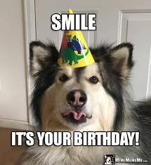 Happy Birthday Dog Meme - funny dog tells birthday jokes happy birthday from dog pg 1 of 7