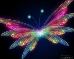 pretty butterfly wallpapers group 61