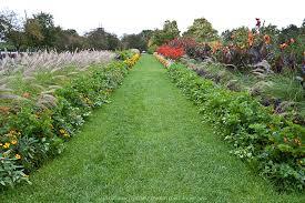 edible ornamental planting greenfuse photos garden