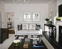 Houzz Sitting Rooms - luxury living room ideas houzz