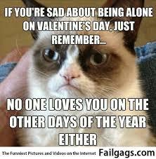 Alone On Valentines Day Meme - on valentines day