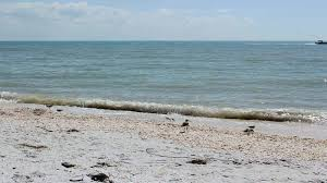 Sanibel Florida Map by Sanibel Island Vacations Sanibel Island Condo Rentals Island