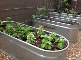 Garden Wall Troughs by Horse Trough Planter Add An Instant Dose Of Charm To Any Outdoor