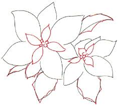 how to draw a poinsettia in 5 steps poinsettia drawings and