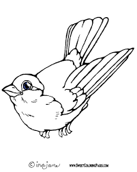 innovative coloring pages birds kids bo 2987 unknown