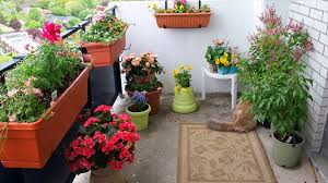 container gardening tips on balconies different sizes shapes