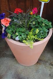 76 best garden ideas images on pinterest garden ideas