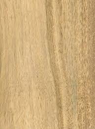 persimmon the wood database lumber identification hardwood