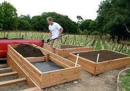 backyard vegetable garden design garden box design ideas exhort