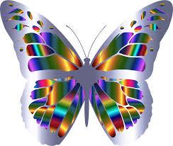 clipart iridescent monarch butterfly 10