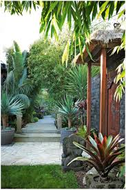 backyards cool simple garden landscaping ideas for small gardens