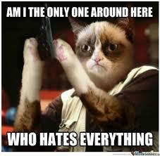 Grumpy Cat Snow Meme - grumpy cat jon snow meme cat best of the funny meme