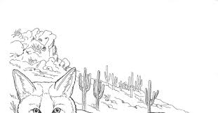 7 images of desert fox coloring pages desert animals coloring