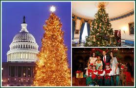 o christmas tree dazzling lights that delight us brunswick