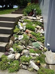 Rock Garden Images Rock Garden For The Steep Part Of The Back Yard Cheaper Than