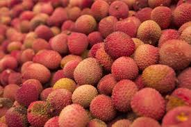 lychee fruit inside biotechin asialychee fruit is the culprit behind the mystery