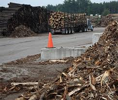 lumber chips and sawdust for sawmills there u0027s no such thing as
