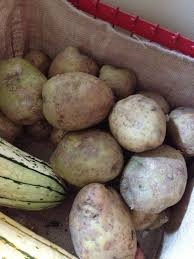 Freezing Root Vegetables - potatoes sometimes freezing is better