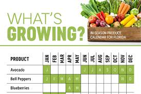 Vegetable Gardens In Florida by What U0027s In Season Florida Produce Calendar Infographic