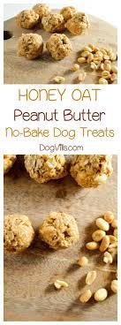 recipe for dog treats best 25 recipes for dog treats ideas on peanut the