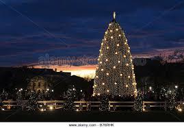 national christmas tree stock photos u0026 national christmas tree