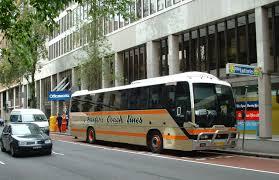 renault bus baxters bus lines australia showbus com bus image gallery