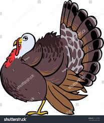cute vector turkey bird stock vector 111173897 shutterstock