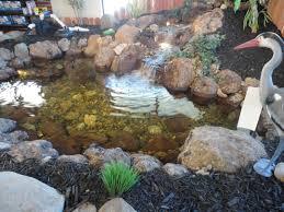 water wise ponds create backyard ambiance folsom telegraph