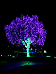 Zoo Lights Address by Zoolights Tacoma At Point Defiance Zoo