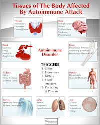 the auto immune nutrition plan