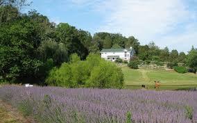 North Carolina travel writing images Get a free organic farm in north carolina for writing a 200 word jpg&a