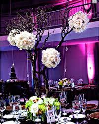 Manzanita Tree Centerpieces Rent A Centerpiece Ostrich Feather Lamp Shade Manzanita Tree