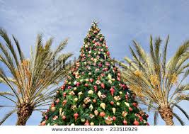 Christmas Ornaments Palm Tree by Palm Tree Christmas Lights Stock Images Royalty Free Images