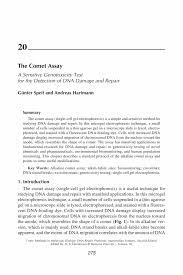 Leasing Agent Job Description Resume by The Comet Assay Springer