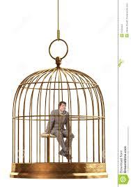 uccelli in gabbia gabbia di uccello fotografia stock immagine di birdcage 5123444