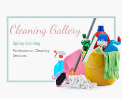 professional cleaning services in royal tunbridge wells spring