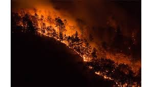 wildfire crews working away from home for thanksgiving wbtv