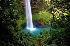 bridal zealand fall new veil water waterfall photo free
