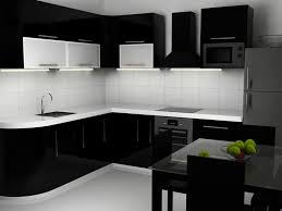 small black and white kitchen ideas 58 best cuines images on modern kitchens kitchen and