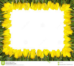Photo Frame Yellow Picture Frames Psp Frame Yellow Window Frames Yellow