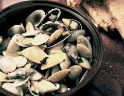 cuisiner des tellines tellines à l apéro souvenirs de camargue