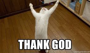 Thank God Meme - thank god praise the lord cat meme generator