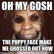 Puppy Face Meme - warning puppy face does not work on me anymore puppy week a